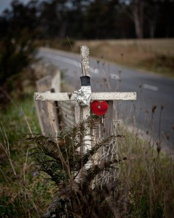 roadside memorial, South Pambula